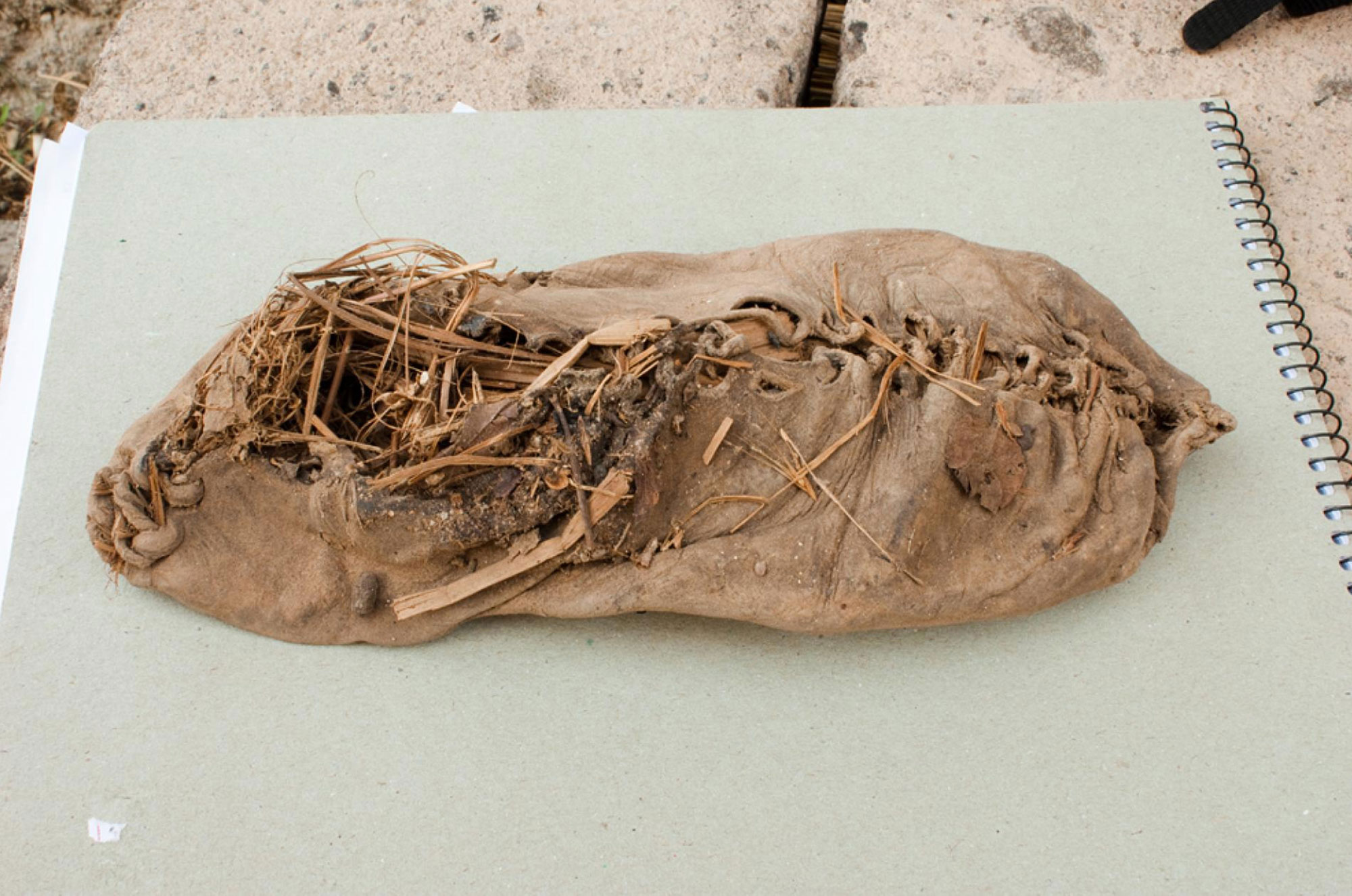 Archeologists found 5000 year old leather shoes