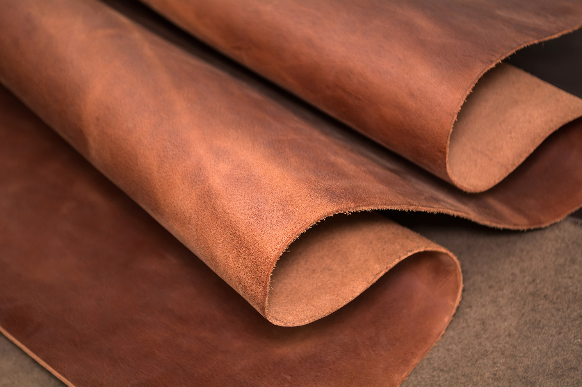 Cotance wants EU commission regulation for leather