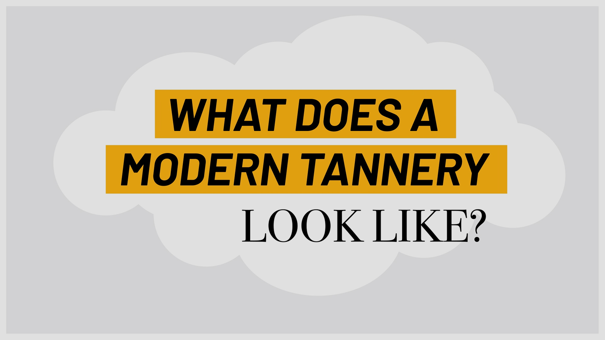 a-modern-tannery-is-a-state-of-the-art-facility