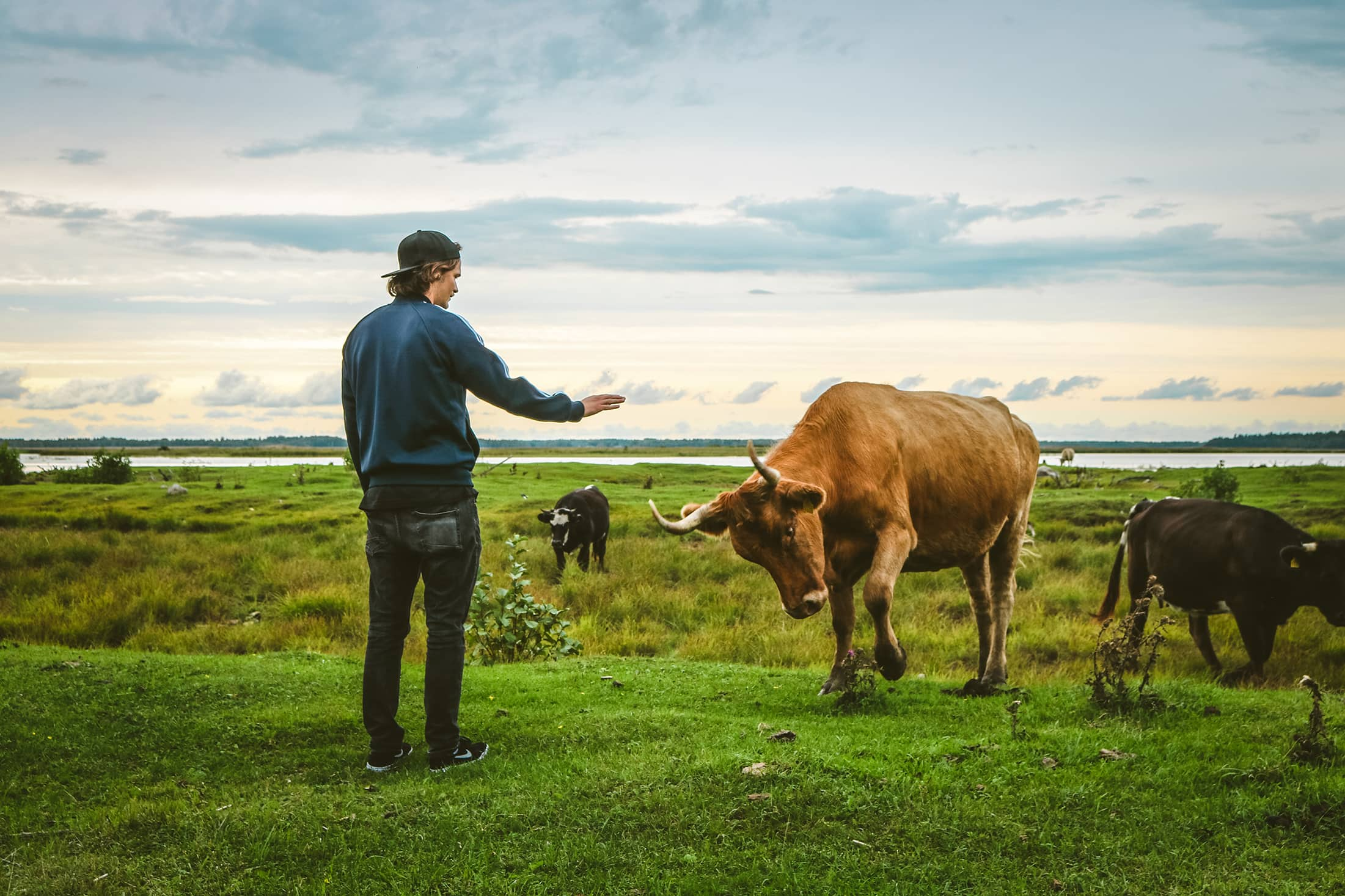 Ruminant agriculture can help us deliver zero emissions when we look at the numbers correctly.