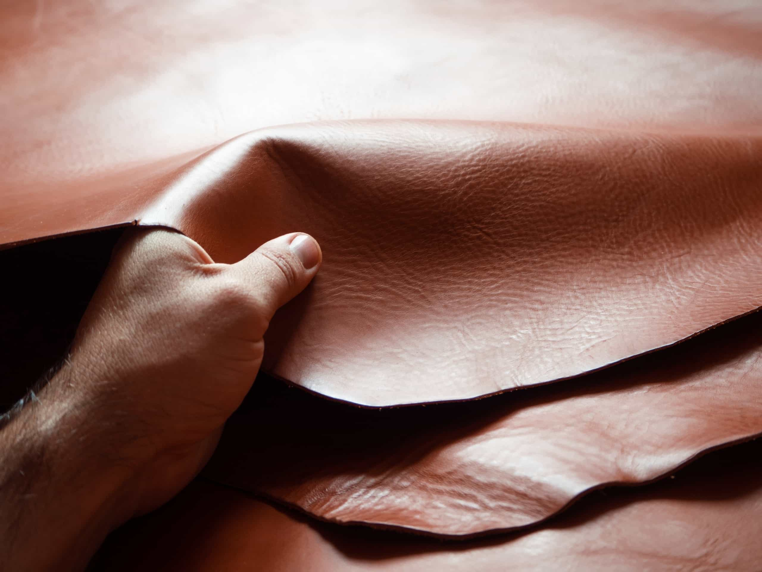 Processing hides into leather is important to reduce waste