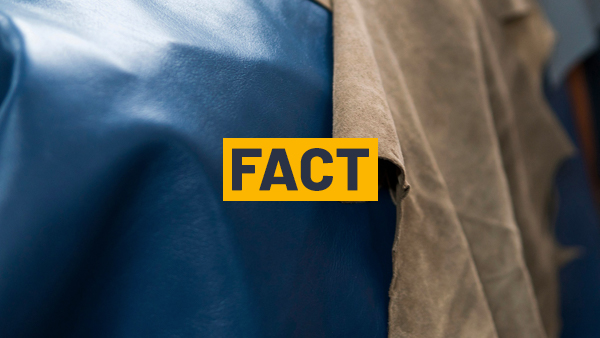 Transparency on leather manufacture Fact 4